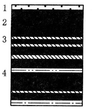 煤岩层微观结构图